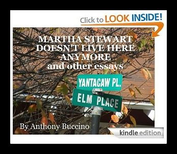 Martha Stewart Doesn't Live Here Anymore - a chapbook by Anthony Buccino