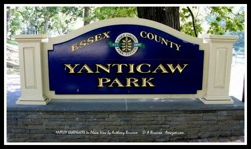 Yanticaw Park, Nutley, NJ by Anthony Buccino