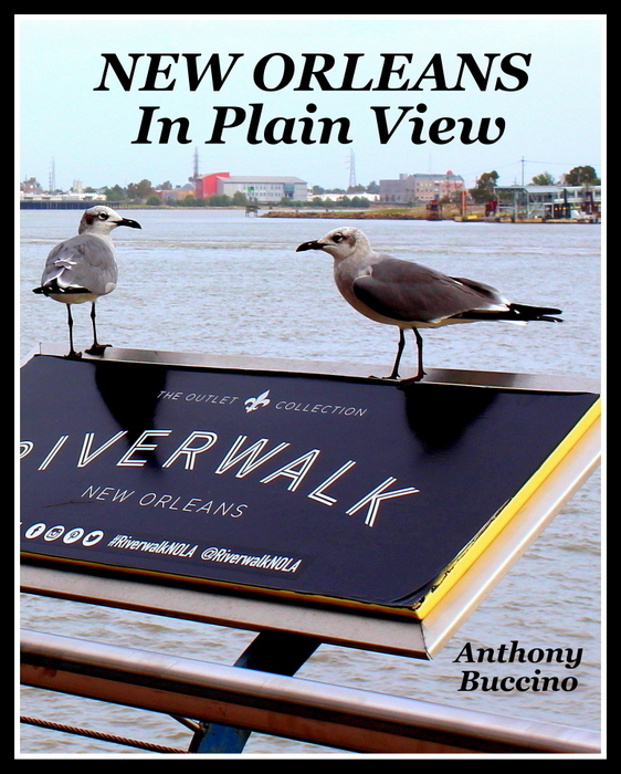 New Orleans In Plain View – by Anthony Buccino