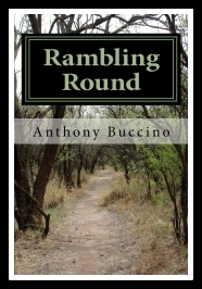 Rambling Round, Inside and Outside at the Same Time by Anthony Buccino